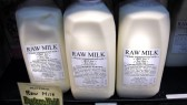 raw-milk-hero-e1460398388691-168x95