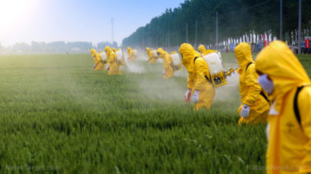 Pesticide-Spray-Agriculture-Farm-Farmer-Fertilizer-Field
